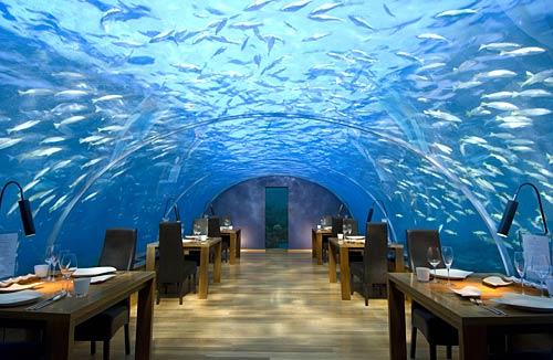 spectacul-undersea-restaurant01