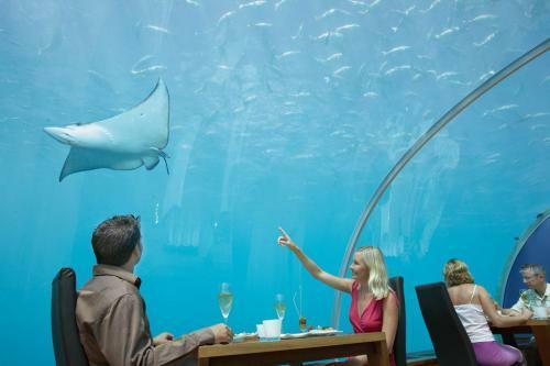 spectacul-undersea-restaurant02