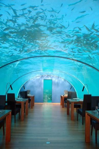 spectacul-undersea-restaurant04