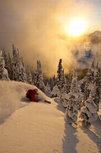 ski-downhil-woo03