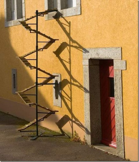 unique_cat_ladder04