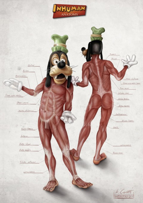 inhuman-anatomy01