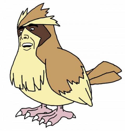pokemon-nic-age03