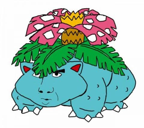 pokemon-nic-age04