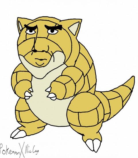 pokemon-nic-age12