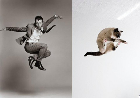 cats-and-male-models03