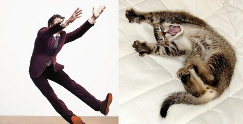 cats-and-male-models18