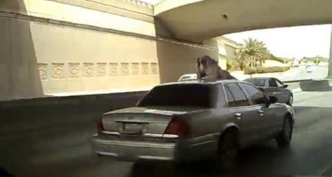 saudi-man-dangerous-action03