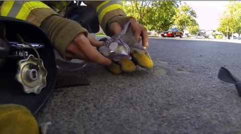fireman-saves-kitten02