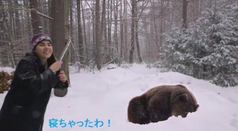flutist-lulls-large-bear02