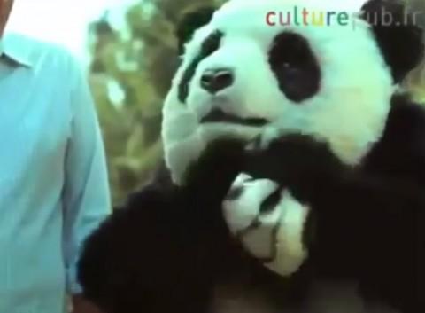 panda-cheese02
