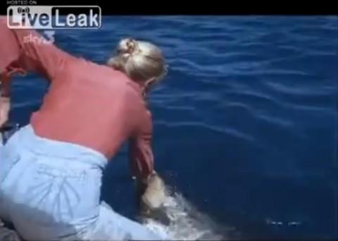 woman-hand-feeding-shark02