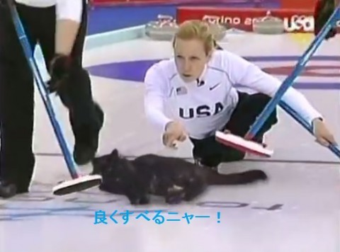 cat-curling02