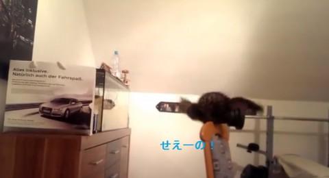 funny-cat-jump-fail02