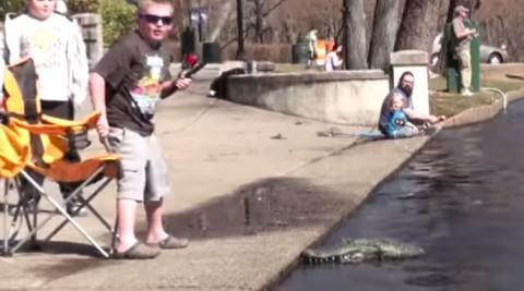 alligator-prank02