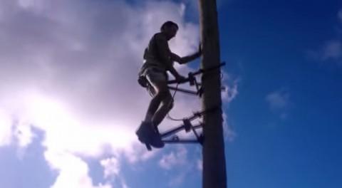 coconut-climbing02