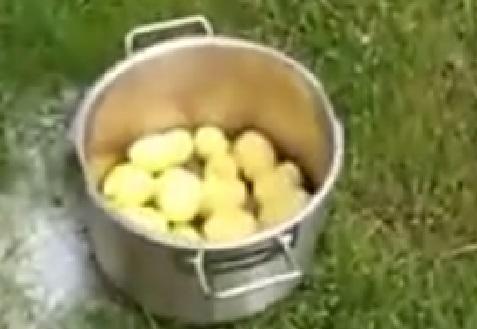 quick-way-to-peel-new-potatoes02