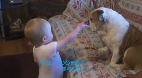 baby-argues-with-bulldog02