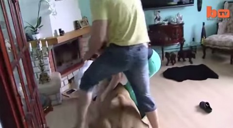 lioness-attacks-man-in-home02