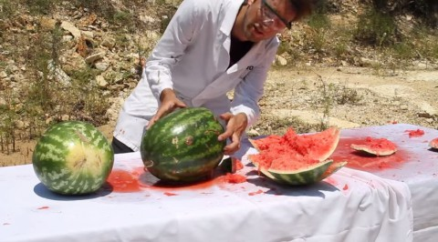 catching-bullet-with-watermelon02