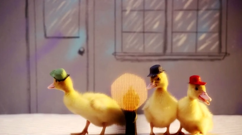 duck-tales-with-real-ducks01