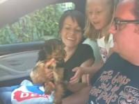 grandpapa-gets-a-puppy04