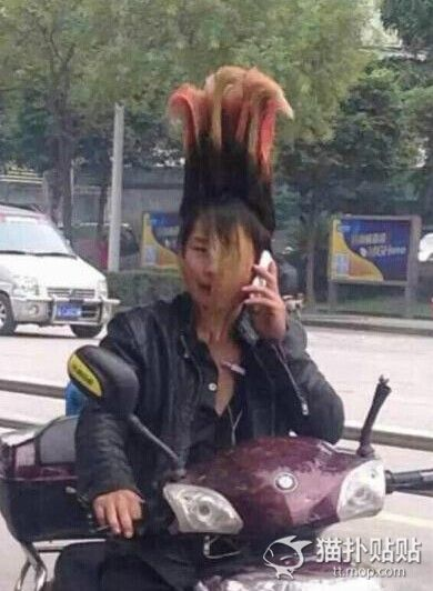 wallop-punk-hair01