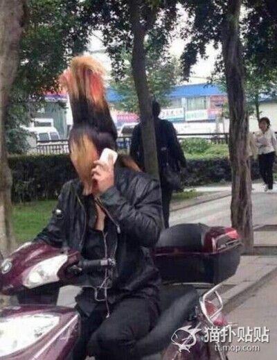 wallop-punk-hair02