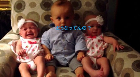 baby-meets-twins02