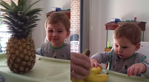 baby-scared-of-pineapple02