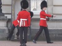 buckingham-palace-guard01