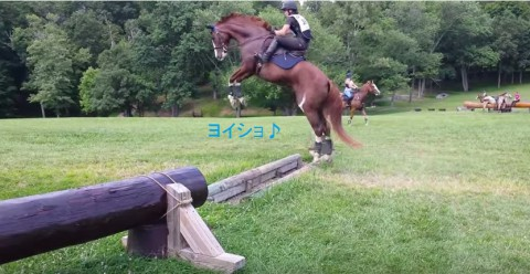 hesitate-horse02