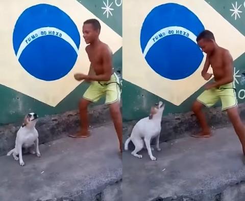 brazil-dog-dance02