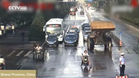 bulldozer-driver-road-rage-rampage01