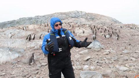 how-penguins-react-to-opera02