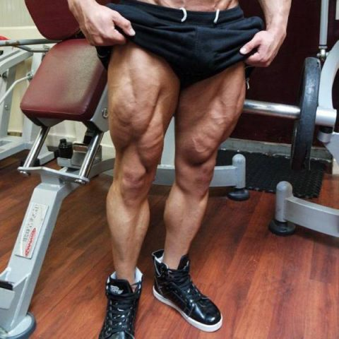 unbelievable-leg-muscle-hypertrophy04