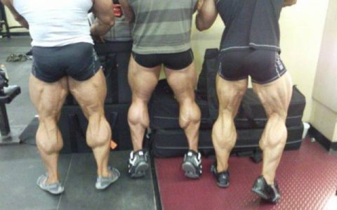 unbelievable-leg-muscle-hypertrophy10