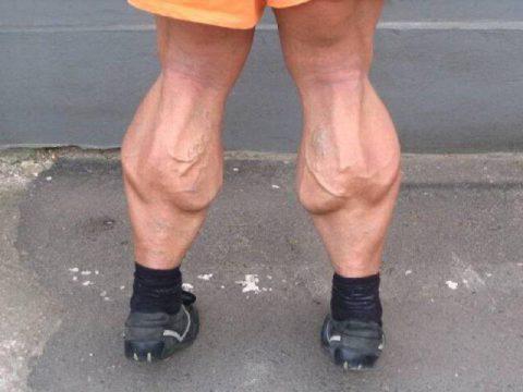 unbelievable-leg-muscle-hypertrophy14