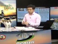 enjoy-live-broadcast-of-stray-cats01