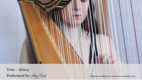 toto-africa-amy-turk-harp03
