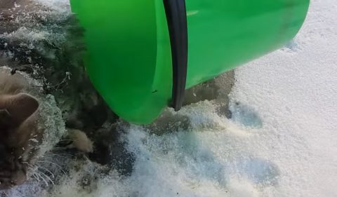 rescuing-frozen-cat02